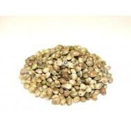 Зерна Конопли CCMoore Hemp Seed 1кг